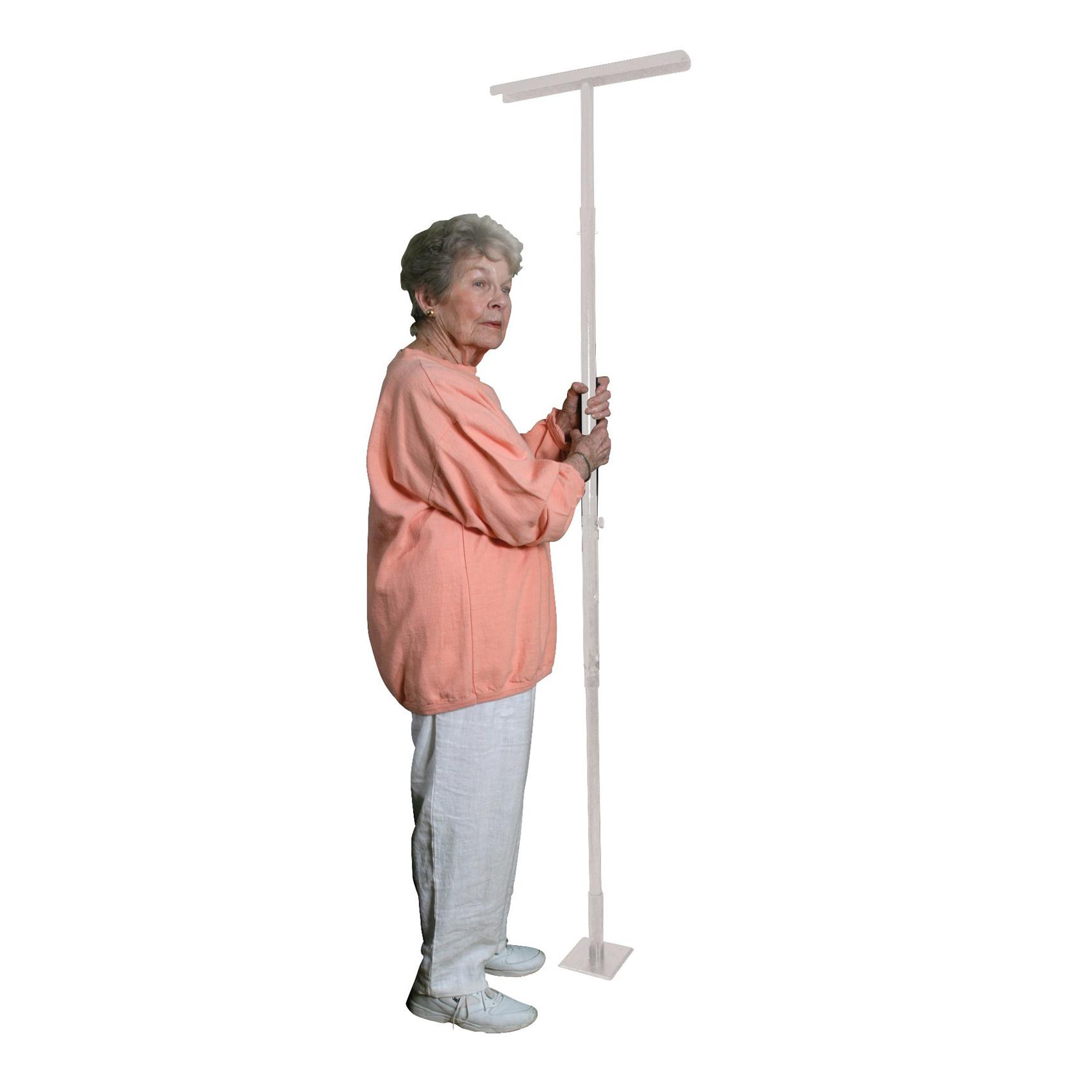 E-Z Assist Pole